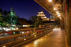 Epcot: Japan (Hamilton!) Tags: world travel vacation lake japan night ball fun epcot florida sony tripod hamilton disney grill resort vista pavilion walt gitzo edo buena teppan katsura nex nex7 sal1650 pytluk sony1650f28 sony165028 headtonemapped