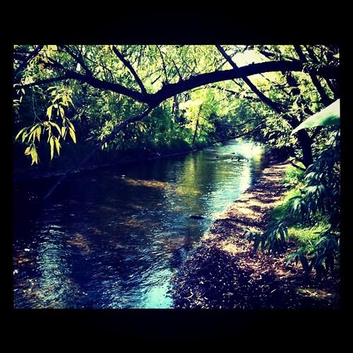 Photo - Boulder Creek