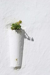 Andaluca - Espaa (mrtungsten62-ON/OFF) Tags: house flower beautiful wall frank spain europe magic archive flowerpot mystical van andalusia whitewall dongen 190513 229613 mrtungsten62 frankvandongen facadewhitepaint