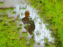 Water Art: The man in a muddy rain puddle (Peggy2012CREATIVELENZ) Tags: canada green wet water alberta grasses muddy bluebirdestates flippedpuddlereflection peggy2012creativelenz p1210220a