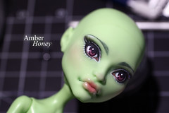 Nessarose (Amber-Honey) Tags: monster amber high mod doll witch ooak cam honey create custom mattel repaint