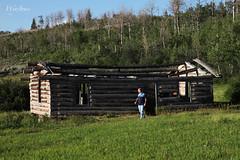 Lookin' It Over (wyojones) Tags: history movie cabin shane path wyoming aspen grandtetonnationalpark historicsite logcabins grosventreroad johnnyerwin wyojones shanecabins luthertaylor luthertaylorcabins taylorhistoricdistrict