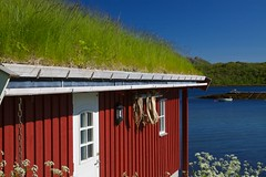 Rorbu hut (Harlekino) Tags: red house norway outdoors fishing scenery europe traditional north scenic arctic hut fjord nordic scandinavia picturesque lofoten greenroof grassroof stockfish sodroof rorbuer rorbu austvagoy touristdestination fishinghut canonefs1755mmf28isusm