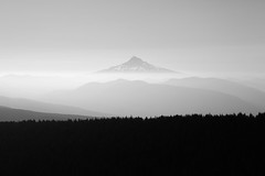 Morning Haze, Mt. Hood (Scott Withers Photography) Tags: oregon mthood columbiarivergorge larchmountain blackwhitephotos sherrardpoint