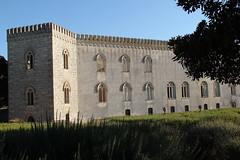 IMG_0792 (c0803f111a783ac8cdb93675a7027dc5) Tags: italy italia sicily sicilia donnafugata