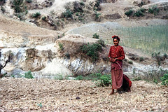11-348 (ndpa / s. lundeen, archivist) Tags: nepal people color film girl field 35mm asian clothing asia southeastasia nick 11 clothes barefoot nepalese 1970s 1972 youngwoman nepali southasia dewolf nickdewolf photographbynickdewolf reel11