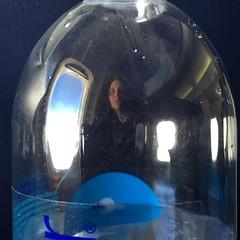 Tiiiiiiired of flying. #southwest #waterbottleportrait (jennifer_loring) Tags: philadelphia square pennsylvania squareformat snapshots unprocessed iphoneography instagramapp uploaded:by=instagram