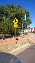 Teddies crossing at Tambo