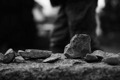 Some Stones (stefankamert) Tags: bw monochrome zeiss mono exposure dof noiretblanc bokeh stones sony sw fullframe a7 bnw baw alienskin mirrorless ilce7 sel55f18z fe55mmf18za stefankamert