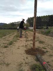 """Preparant el pati per estocar fusta i biomassa <a style=""""margin-left:10px; font-size:0.8em;"""" href=""""http://www.flickr.com/photos/134196373@N08/27071851860/"""" target=""""_blank"""">@flickr</a>"""