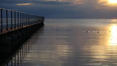 Bridge into silent water! (mpersson60) Tags: bridge sunset sea sweden sverige gotland visby hav solnedgng brygga