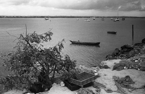 Dar Es Salaam, Oyster Bay