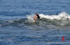 DSC_0036 (Ron Z Photography) Tags: surf surfer huntington surfing huntingtonbeach hb surfin surfsup huntingtonbeachpier surfcity surfergirl surfergirls surfcityusa hbpier ronzphotography