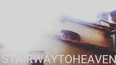 #stairwaytoheaven #rooftop #blackcat #snapshot #lucca #toscana #obenauf#oben (PIKDAME) Tags: travelling rooftop square outdoor stairway gingham squareformat oben stairwaytoheaven travelstar vonoben travelheart obenauf todkana travelwithheart