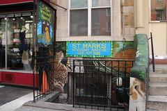 E9thSt (53) (ShellyS) Tags: nyc newyorkcity manhattan eastvillage buildings wallart murals streeets