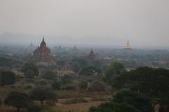 2016myanmar_0371 (ppana) Tags: bagan alodawpyay pagoda ananda temple bupaya dhammayangyi dhammayazika gawdawpalin gubyaukgyi myinkaba wetkyiin htilominlo lawkananda lokatheikpan lemyethna mahabodhi manuha mingalazedi minochantha stupas myodaung monastery nagayon payathonzu pitakataik seinnyet nyima pagaoda ama shwegugyi shwesandaw shwezigon sulamani thatbyinnyu thandawgya buddha image tuywindaung upali ordination hall