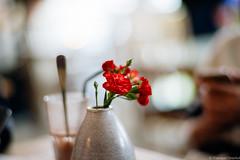 DSC07195.jpg (iheresss) Tags: cafe f14 sony 85mm lofoten carlzeiss henningsvaer planart a7r lysstoperiet