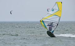 To Love the Wind (kaprysnamorela) Tags: lake toronto ontario canada water nikon sail windsurfing twc cherrybeach nikond3300