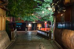 -   Gion Shira-kawa River (Active-U) Tags: japan night kyoto