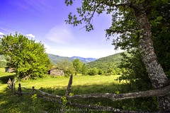 Ilca Valla Bal Kyler 113_11 (Ozcan MALKOCER) Tags: old trip blue light shadow sky house mountain tree green nature turkey photography daylight scenery cloudy trkiye sunny scene canyon oldhouse woodenhouse kastamonu colorimage timeofday horizontalimage vallakanyonu