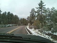 Snow! (runningdog) Tags: arizona cactus snow rain hail pine clouds forest highway desert pinetrees payson winterweather