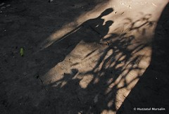 The world of shadow XV (Sopnochora) Tags: life light shadow reflection silhouette canon eos flickr day shadows object ngc lifestyle peoples story excellent ttl bp uwl bangladesh 1022mm gettyimages 500d shadow flickr canon light best light day shadow image photographers peoples living bangladeshi 500d sopnochora mursalin mdhuzzatul