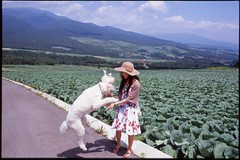 (bensn) Tags: dog film field japan jump pentax slide linus velvia poodle 100 f18 standard limited emi fa lx 31mm
