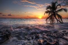Good Day (BarneyF) Tags: 3 tree silhouette sunrise island la paradise hilton wave palm seychelles passe hdr exp labriz