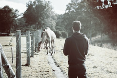 Luke and the camels (DEASAL.) Tags: trees light field vintage fence wire luke camel leak barbed paddock