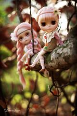 poca & hontas sailing through the forest