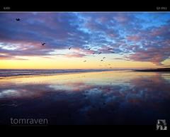Flying Away (tomraven) Tags: sunset sea newzealand sky sun seagulls beach birds clouds fly surf gulls flyaway otakibeach dancinggull tomraven degull aravenimage q32010 flickrstruereflection1 flickrstruereflection2 q32012