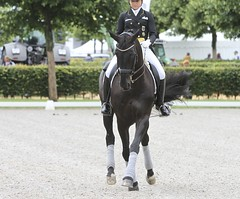 IMG_2437 (neulands) Tags: horses cheval pferde dressage grandprixspecial dorotheeschneider divaroyal chioaachen2012