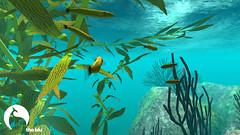 Kelp Forest delight (theBlu) Tags: ocean sea fish game coral 3d underwater screensaver modeling scuba social kelp animation learning 3danimation habitat app kelpforest texturing learninggame oceanart socialgame oceanconservation makermedia