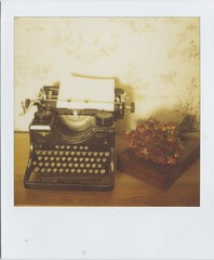 write to me (Lizzie Staley) Tags: red roses wallpaper black france film typewriter polaroid sx70 instant 779