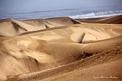 Dunas del desierto de Sahara (Aysha Bibiana Balboa) Tags: sahara agua desierto dunas desiertos desiertotuareg ayshabibianabalboa playaatardecercaer