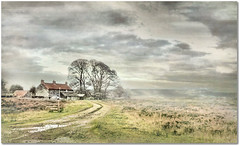 The North York Moors (~ paddypix ~) Tags: autumn trees wild england sky fall clouds farmhouse rural landscape farm heather yorkshire moors lonely bracken northyorkmoors moorland copse rudland kurtpeiserexcellence
