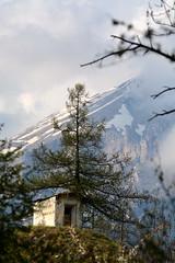 Fede alpina (MILESI FEDERICO) Tags: wild italy panorama detail primavera nature landscape nikon europa europe italia details piemonte dettagli tamron alpi piedmont paesaggio valsusa dettaglio 2016 valdisusa milesi alpicozie valledisusa d7100 tamron70200 visitpiedmont altavallesusa visitpiedmon altavaldisusa valliolimpiche nikond7100 milesifederico