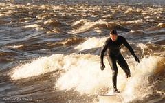 Surfeur ... ( P-A) Tags: sport danger photos participants journalistes rapides photographes pontchamplain visiteurs surfeurs comptitions ottawaon dfis kayakistes sportifs eaufroide tmraire ~~atmosphere~~ activitannuelle simpa ledesbates planchespagaies vigilances