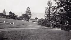 Sydney Botanic Garden (Royal Australian Historical Society) Tags: nature garden sydney australian royal australia nsw historical botanic garden rahs royal society century 20th