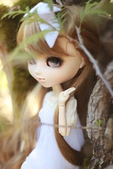 hiding (e f i c h u ) Tags: new summer white eyes doll blind alice wig classical pullip brunette coolcat babybrown obitsu eyechips 27cm leekeworld rewigged rechipped sbhm efichu denelfte