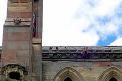 Melrose Abbey Gargoyles (David_Leicafan) Tags: abbey skull scotland pig gargoyle melrose 90mmelmarc