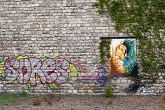 Parisian Graffiti  (Saint-Ouen) (eddy.kamalsky) Tags: street travel portrait urban paris france art wall grafitti african protest backpacking cans liberte sores saintouen
