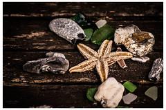 beachstuff  (Lumins) Tags: summer holiday beach star wooden starfish postcard sony things sharp alpha seastar
