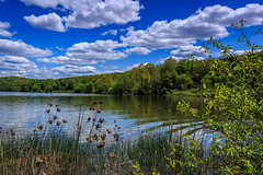 Lakeside (david_sharo) Tags: trees lake reflection nature water clouds landscape moraine neutraldensityfilter davidsharo