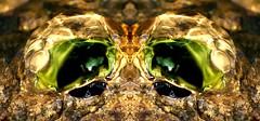 Gollum looking for the precious (HansHolt) Tags: macro reflection eye water rock stone canon pond eyes kei 300d precious gollum lordoftherings hobbit canoneos300d tolkien smeagol vijver reflectie canonef100mmf28macrousm bubblingrock borrelsteen