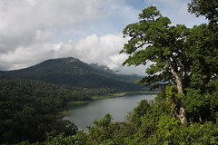 Lake Tamblingan (Timmok) Tags: lake tamblingan