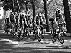Common_Goal (Iloper) Tags: european lisbon sigma olympus 28 championships triathlon 60 omd 2016