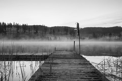 Quiet morning (jarnasen) Tags: morning blackandwhite bw copyright mist lake nature monochrome fog landscape mono early mood conversion sweden outdoor jetty tripod wide sverige scandinavia svartvit lakescape woodenjetty nordiclandscape fujifilmxt1 xf1024mmf4 jarnasen jrnsen