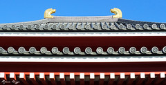 Symmetry (DameBoudicca) Tags: roof japan temple sensoji tokyo buddhism  nippon  toit dach  japon buddhisttemple giappone templo nihon tak tempel tokio bouddhisme tempio budismo japn cubierta buddhismus  buddhismo sensji   copertura buddhisttempel jikakudaishi ennin templosbudistas  yogodohall templesbouddhistes   yogodo