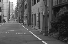 160528_SRT101_032 (Matsui Hiroyuki) Tags: minoltasrt101 minoltamctelerokkorpf100mmf25 epsongtx8203200dpi lomographybwladygrayiso400